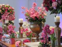 Orquídeas - amo!!!